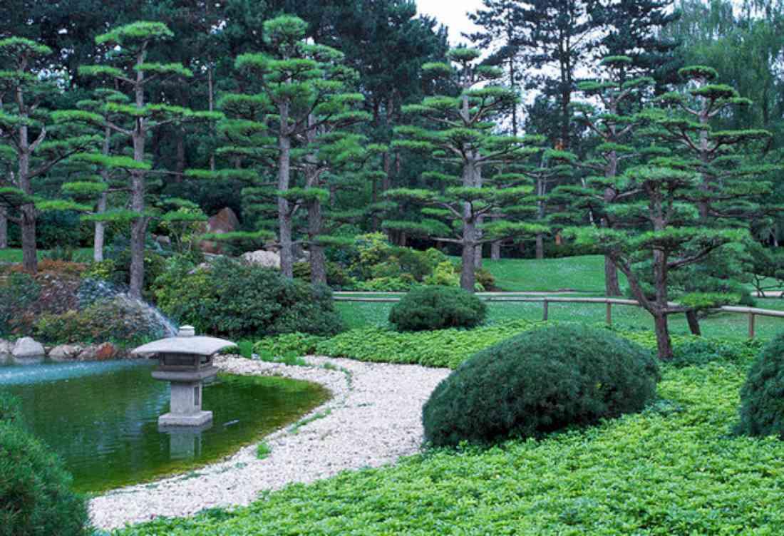 حديقة نوردبارك اليابانية دوسلدورف