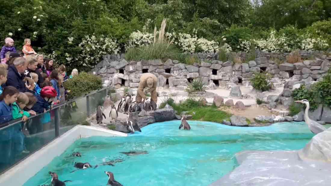 حديقة حيوانات كولون