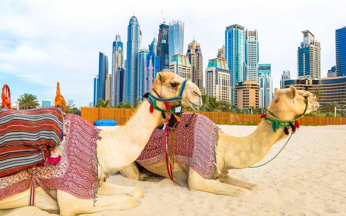 السياحة في الإمارات العربية المتحدة.