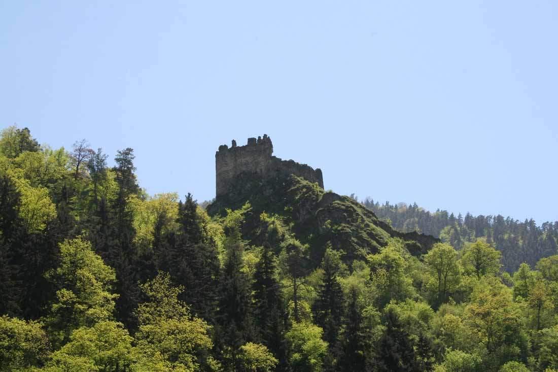 قلعة غوغيا في بورجومي